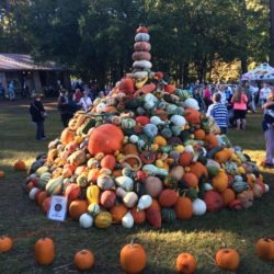 A Look at the Country Living Fair in Georgia