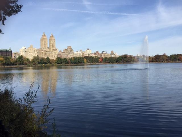 A stroll through Central Park on a fall day